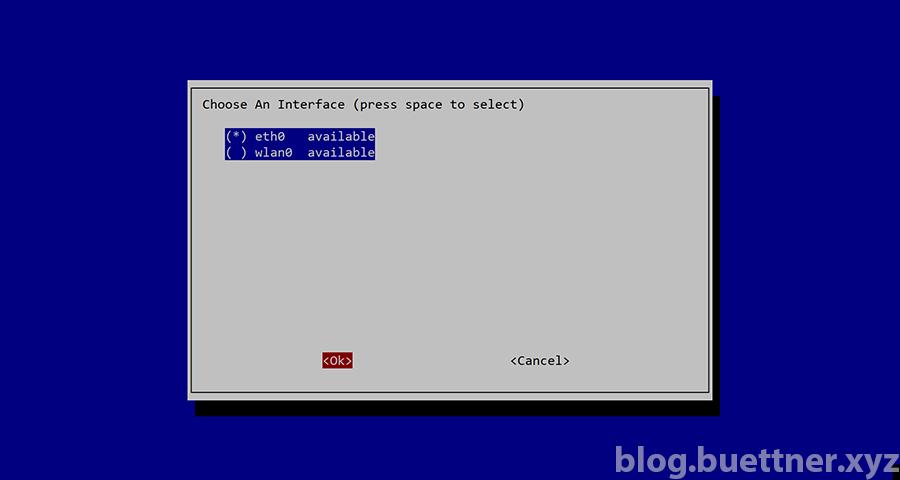 Pi-hole Installation: Auswahl Netzwerkinterface